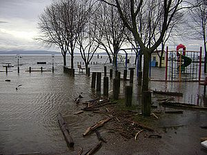 Lake Champlain was at flood stage for over two months in 2011, cresting at 103.2 feet on May 6th. Photo by Lori Fisher.