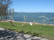 Driftwood sculptures on Burlington's waterfront. Photo by Lori Fisher.